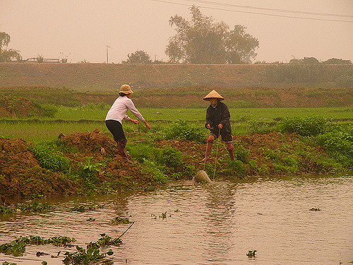 Hình ảnh người nông dân đang tát nước