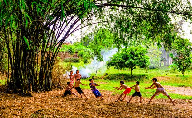 Hình ảnh trẻ em vui đùa bên những cây tre